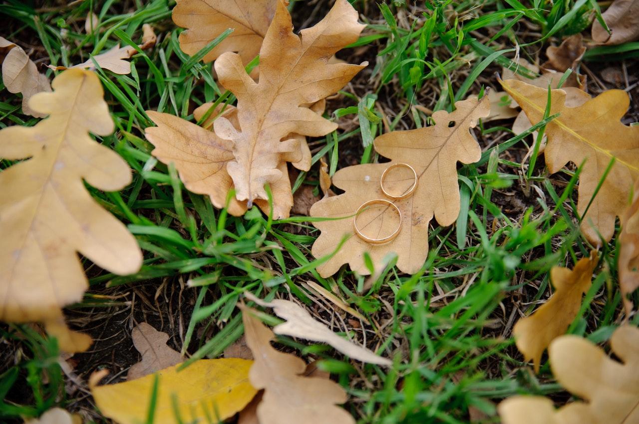 Wedding rings in Autumn
